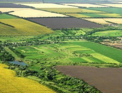Станом на вересень, 479 об'єднаних громад отримали у комунальну власність с/г землі