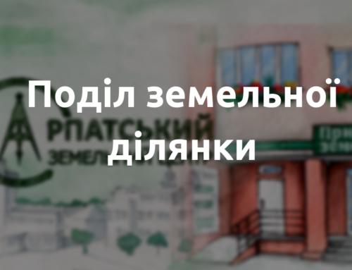 Поділ земельної ділянки – як розділити земельну ділянку в Україні