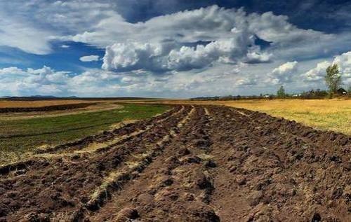 В Україні потрібно ввести мораторій на укладення договорів емфітевзису