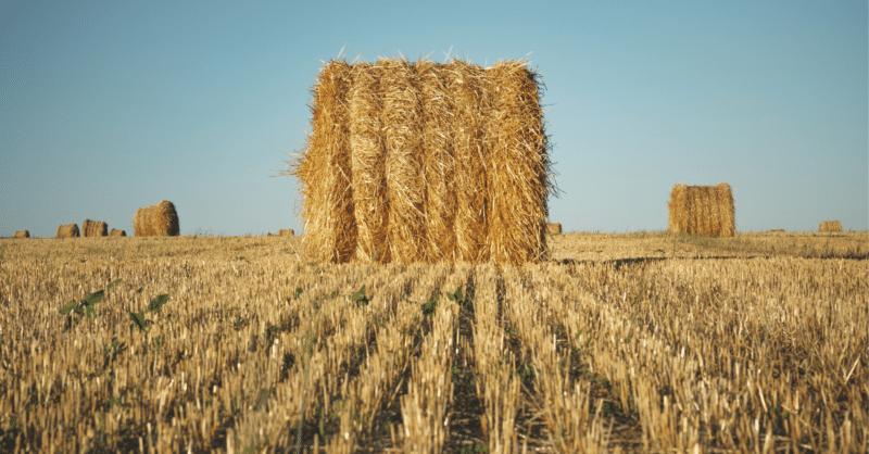закон про обіг земель сільськогосподарського призначення
