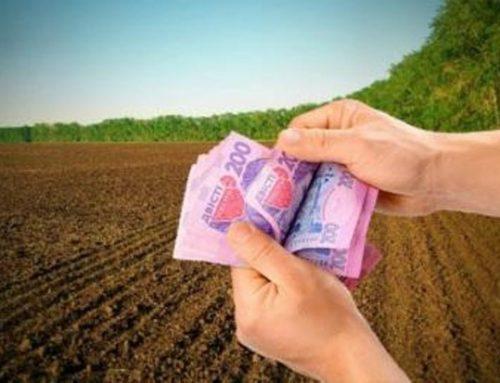 Через запровадження нової нормативної грошової оцінки земель місцеві бюджети можуть втратити понад 2 млрд грн