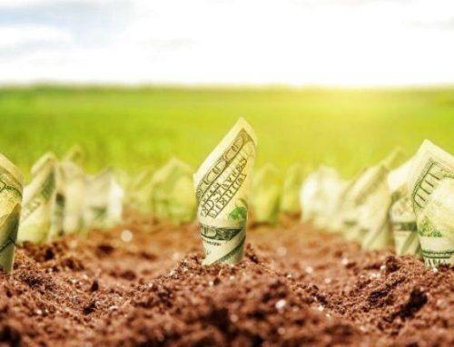 Мінекономрозвитку надаватиме кредити фермерам на купівлю землі
