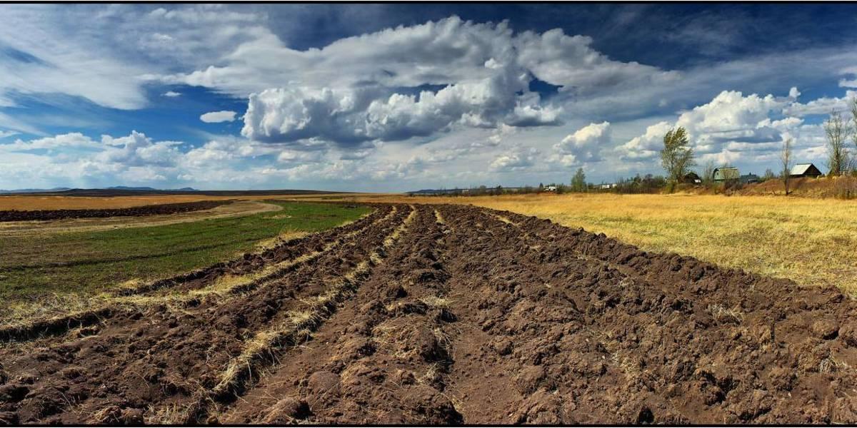 ОТГ вже отримали майже 400 тис. га земель