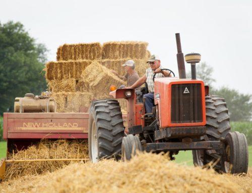 Через земельний мораторій Україна щороку втрачає $52 млн податків