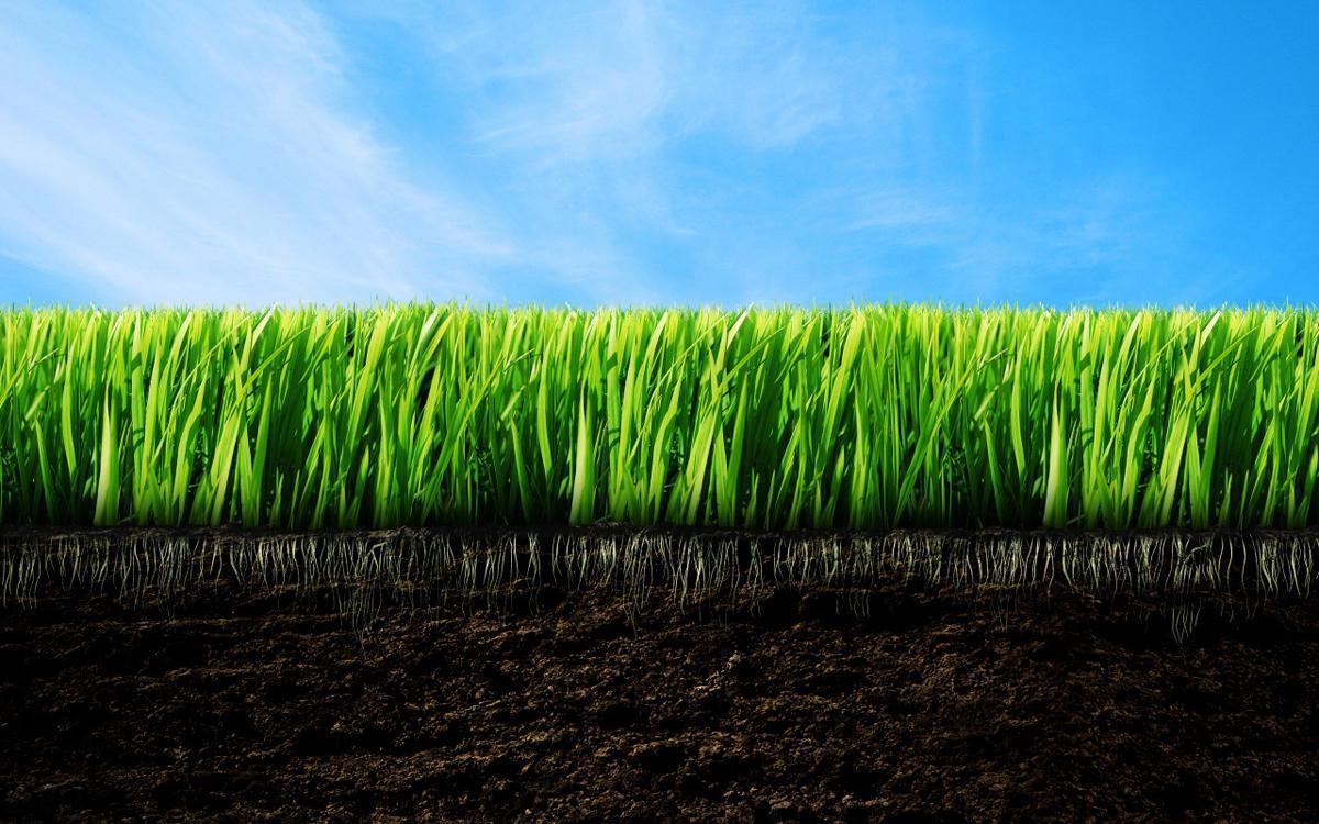інвентаризація земель